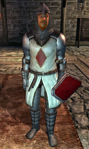 File:Sir Thedret Knight.png