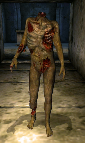 File:Headless Zombie.png
