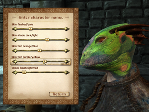 Character Creation (Oblivion)