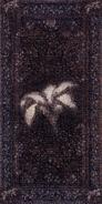 Dibella banner