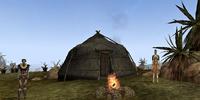 Elanius Camp