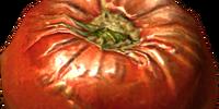 Tomato (Skyrim)