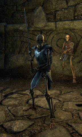 File:Skeletal Blademaster.png