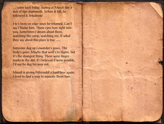 File:Ralion's Journal, Day 147.png