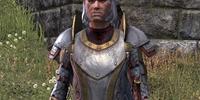 Sir Edmund