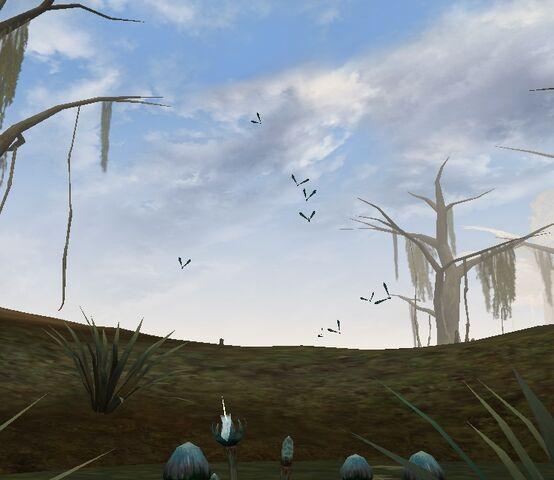 File:Dragonflies.jpg