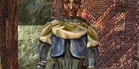 Miniel (Morrowind)