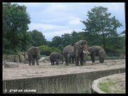 Tierpark Berlin5.jpg