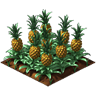 Crop Pineapple Grown SW icon