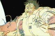 Akira Tetsuo