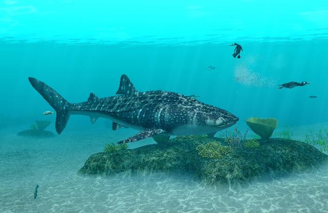 Oceans Whales Whale Shark Endless Ocean 2