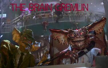 Brain Gremlin Canned Food And Shotguns