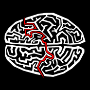 A-MAZEing Brain