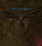 A stone hive aggressor