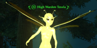 High Warden Tessla