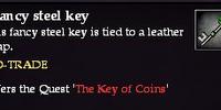 A fancy steel key