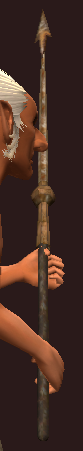Blessed Iron Lance (Equipped)