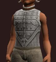Gambler's Hauberk of the Citadel (Equipped)