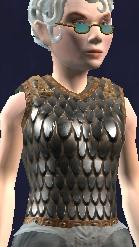Chain Shirt of Restrained Wrath Equipped