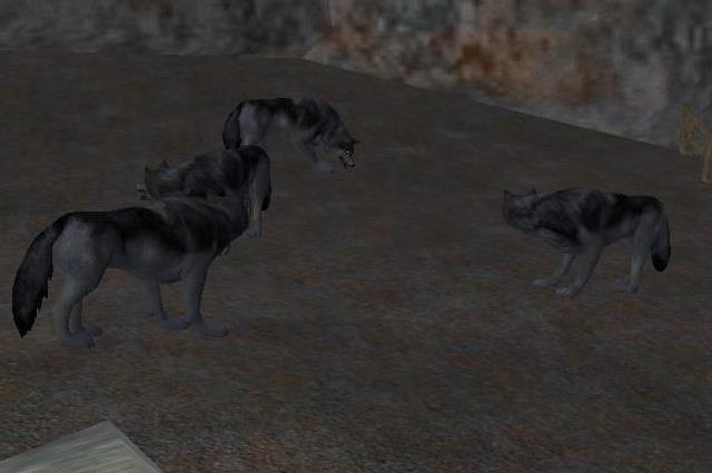 File:War wolves in Kamp Krulkiel.jpg