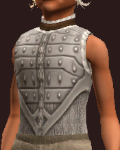 Spiritweaver's Hauberk of the Citadel (Equipped)