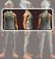 Spiritualist's Hauberk (Equipped)