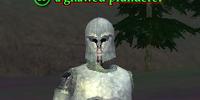 A gnawed plunderer