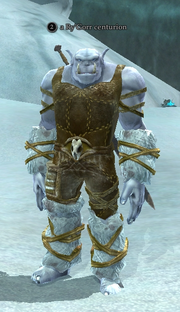 A Ry'Gorr centurion (Frostfang Sea)