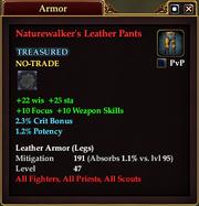 Naturewalker's Leather Pants