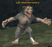 A blackrunner warrior
