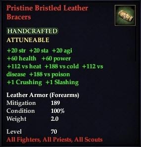 File:Pristine Bristled Leather Bracer.jpg