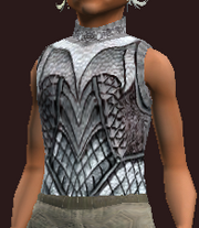 Stormcaller's Winter Weave Tunic (Equipped)