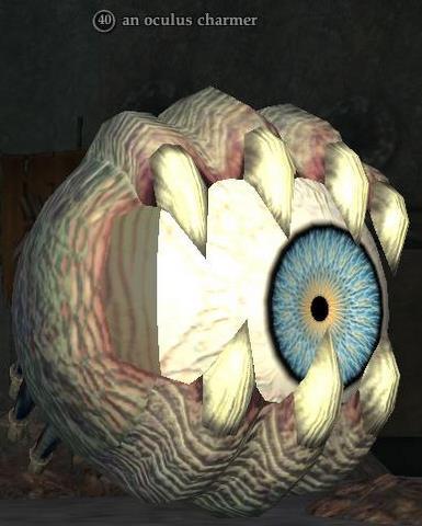 File:An oculus charmer.jpg