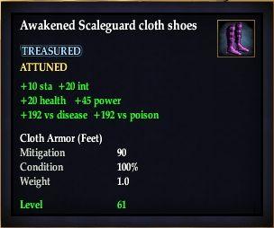 File:Awakened Scaleguard cloth shoes.jpg