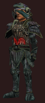 T9 Plate Offensive - Hard (Armor Set) (Visible, Male)