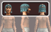 Roughspun Cap of Putrescence (Equipped)