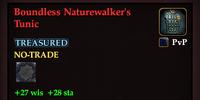 Boundless Naturewalker's Tunic