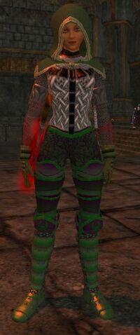 File:Gnillaw's Fear Plated Shinguards worn.jpg