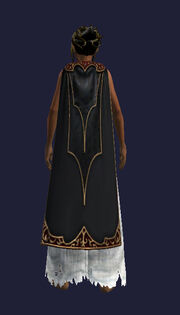 Flowing Black Cloak (Equipped)