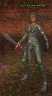 A Tunarian protector (wood elf)