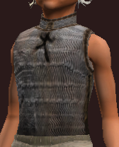 Imbued Iron Chainmail Coat (Equipped)