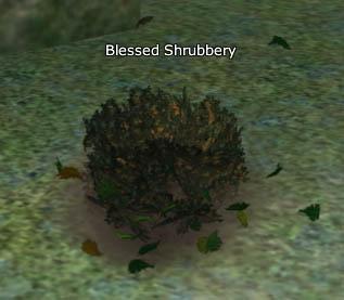 File:Blessed shrub.jpg