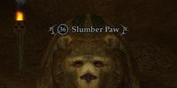 Slumber Paw