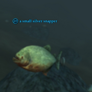 A small silver snapper