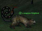 A snapjaw blightrat