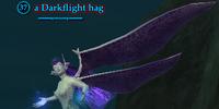 A Darkflight hag