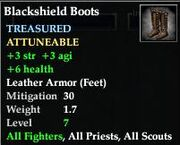 Blackshield Boots