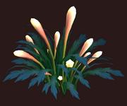 Luxuriant Zavith'loa Glowflower (Visible)