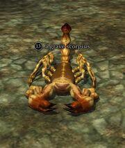 A grave scorpius