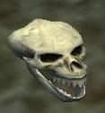 File:Skull of a fallen Iksar.jpg